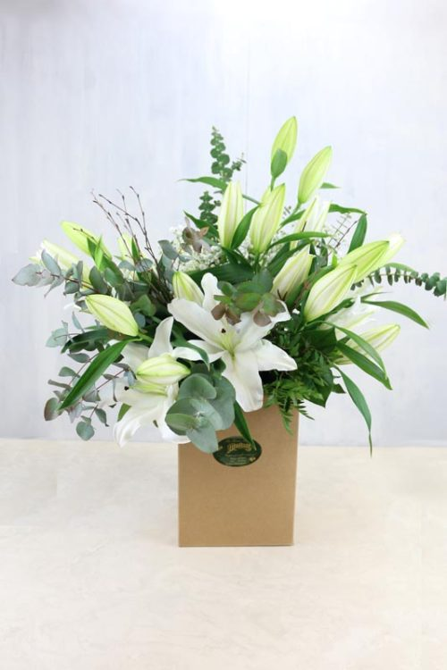Lillie White - oriental lilies with beautiful seasonal foliage